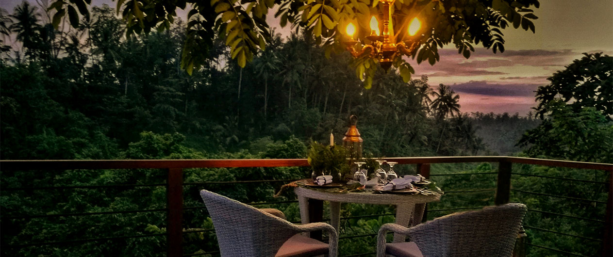 Forest Dining At Tree Deck Romantic Dinner Experience At